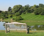 View of Japanese Garden at Chicago Botanic Garden