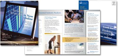 BAI-BS-Online-Brochure_SM